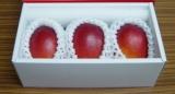 天草マンゴー 2L(3個入り)